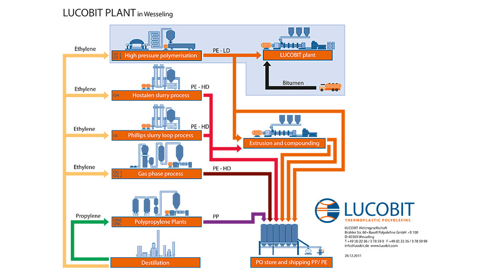Infografik Lucobit AG