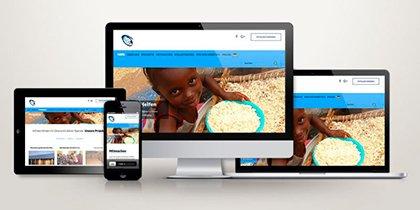 Webdesign Amebii Ghana e.V.